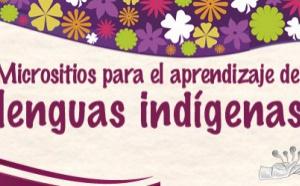Usan las redes sociales para promover las lenguas indígenas
